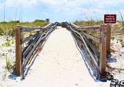 Path To The Beach Photo Prints - Footwear Required Print by Jeanne Forsythe