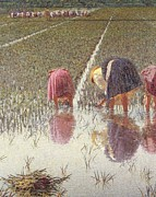 Rice Field Paintings - For eighty pennies by Angelo Morbelli