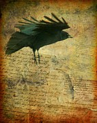 Crow Collage Prints - For The Ages Print by Gothicolors And Crows