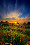 Phil Koch - For When The Day Began