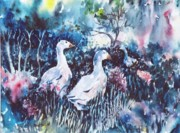 Ducks Paintings - Foraging Ducks  by Trudi Doyle