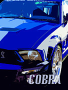 Phill Petrovic - Ford Mustang Cobra