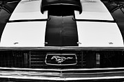 Ford Mustang Metal Prints - Ford Mustang Monochrome Metal Print by Tim Gainey
