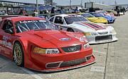 Racing Mustangs Posters - Ford Mustangs at Sebring Raceway Poster by Tad Gage