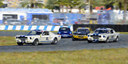 Racing Mustangs Prints - Ford Mustangs at the Corner at Daytona Speedway Print by Tad Gage