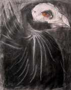 Vulture Drawings Metal Prints - Foreboding Vulture Metal Print by Kylani Arrington
