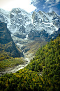 Snow Pyrography Prints - Forest and mountains in Himalayas Print by Raimond Klavins