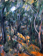 John Peter Metal Prints - Forest caves in the cliffs above the Cheteau Noir by Cezanne Metal Print by John Peter