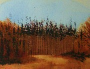 Napa Mixed Media - Forest Fall by Rebecca Lou Mudd