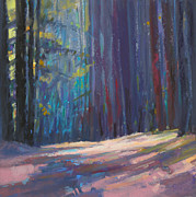 Massachusetts Pastels Posters - Forest Light Poster by Ed Chesnovitch
