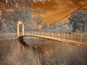 Infrared Art - Forest Park Bridge Infrared by Jane Linders