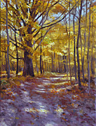 Scott Harding - Forest Path