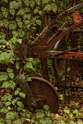 Shed Digital Art Metal Prints - Forest Reclaimed Metal Print by Jack Zulli