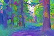 Steve Ohlsen - Forest Road - Color Splash 2