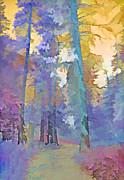 Steve Ohlsen - Forest Road - Color Splash 3