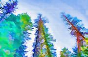 Steve Ohlsen - Forest Splash