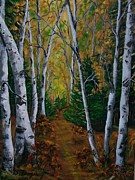 Sharon Duguay - Forest Trail