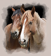 Wild Horses Digital Art Prints - Forever Friends Print by Daniel Hagerman