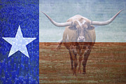 Long Horn Cow Photos - Forever Texas by Paul Huchton