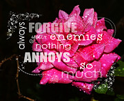 Enemies Prints - Forgiveness Print by Cindy Nunn