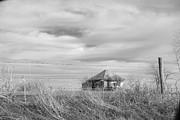 Carolyn Pettijohn - Forgotten Farm BW