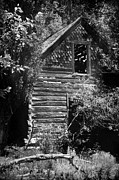 Sawtooth Mountains Metal Prints - Forgotten Log Cabin Metal Print by Cindy Singleton