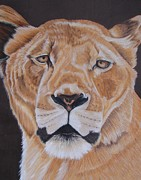 Lioness Drawings Posters - Forgotten queen Poster by Lea Sutton