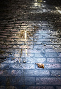 Cobblestones Photos - Forgotten by Scott Norris