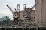 Crane Metal Prints - Forgotten Times Metal Print by Stefan Kuhn