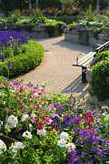 Garden Flowers Photos - Formal garden by Elena Elisseeva