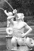 Forsyth Park Photos - Forsyth Park Fountain - Black and White 1 2X3 by Carol Groenen