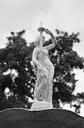 Savannah Photos - Forsyth Park Fountain - Black and White 2 2X3 by Carol Groenen