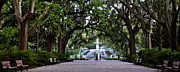 Forsyth Park Photos - Forsyth Park Fountain Savannah  by John McGraw