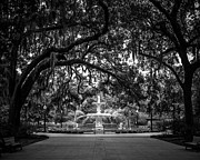 Savannah Fine Art Photography. Savannah Old Trees Prints - Forsyth Park Print by Perry Webster