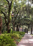Forsythe Fountain Savannah Framed Prints - Forsythe Park Framed Print by Noah Browning