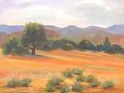 Fort Collins Painting Framed Prints - Fort Collins Foothills Framed Print by Marcy Silverstein