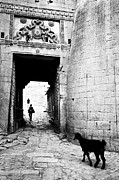 Fort Entrance Gate Print by Jagdish Agarwal
