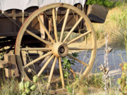 Pioneer Scene Prints - Fort Laramie WY - Moving west on wagon wheels Print by Christine Till