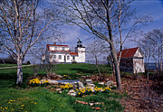 Maine Lighthouses Posters - Fort Point Lighthouse Poster by Skip Willits