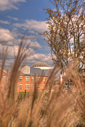 Mhs Framed Prints - Founders Hall through the grasses Framed Print by Mark Dodd