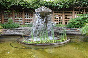Meditative Framed Prints - Fountain At The Historic Luther Burbank Home and Gardens Santa Rosa California 5D25913 Framed Print by Wingsdomain Art and Photography