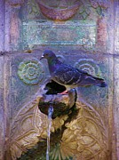 Michele Penner - Fountain Pigeon