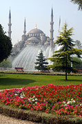 Sultanahmet Camii Framed Prints - Fountains of the Blue Bosque Framed Print by Bob Phillips