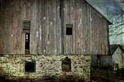 Shed Prints - Four Broken Windows Print by Joan Carroll