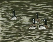 Geese Drawings Prints - Four Geese on River Print by Troy Argenbright