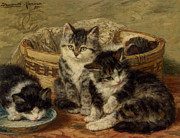 Kittens Framed Prints - Four Kittens Framed Print by Henriette Ronner Knip