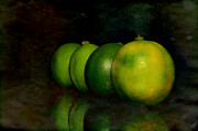 Lime Photo Prints - Four limes Print by Tommy Hammarsten