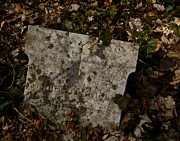 Grave Photos - Four Seasons Become One by Odd Jeppesen
