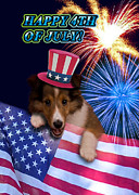 Wildlife Celebration Digital Art - Fourth of July Sheltie Puppy by Jeanette K