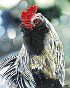 Martyr Painting Posters - Fowl Martyr Poster by Cara Bevan